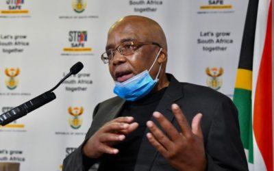 Motsoaledi to review permanent residence visas after Mkhwebane's Gigaba finding